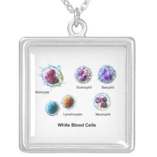 白血球の白血球の図表 シルバープレートネックレス