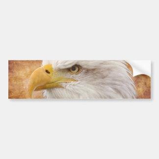白頭鷲のポートレート バンパーステッカー