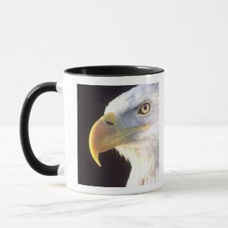 白頭鷲のポートレート、Haliaeetusのleucocephalus、 マグカップ