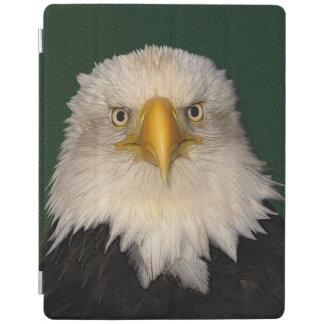 白頭鷲の野性生物の写真のポートレート iPadスマートカバー