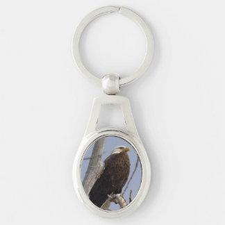 白頭鷲の金属Keychain キーホルダー