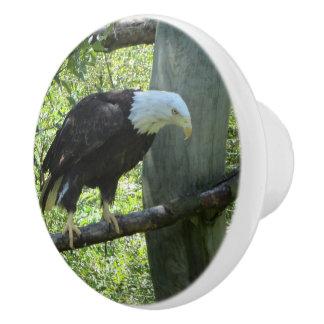白頭鷲 セラミックノブ