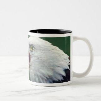 白頭鷲(Haliaeetusのleucocephalus) ツートーンマグカップ