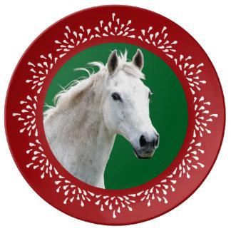白馬の涙の休日のプレート 磁器プレート
