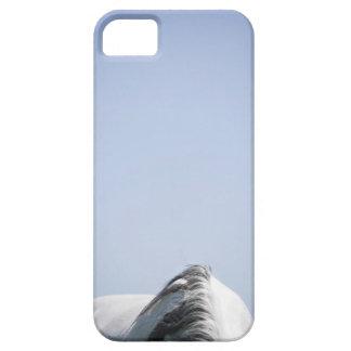 白馬の詳細 iPhone SE/5/5s ケース