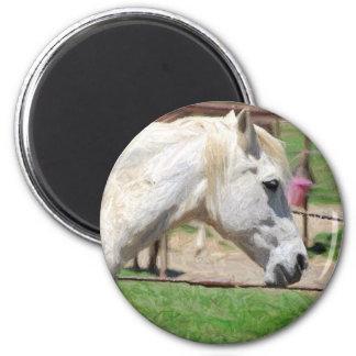 白馬の鉛筆のアートワーク マグネット