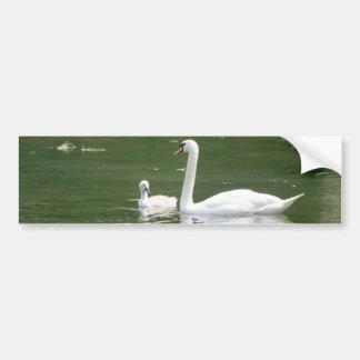 白鳥および彼女のCygnet バンパーステッカー