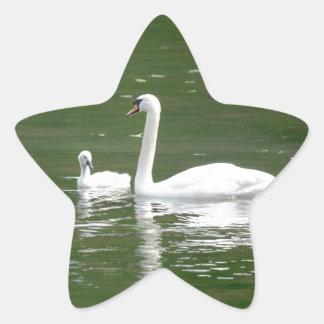 白鳥および彼女のCygnet 星シール