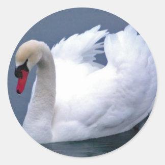 白鳥の優雅 ラウンドシール
