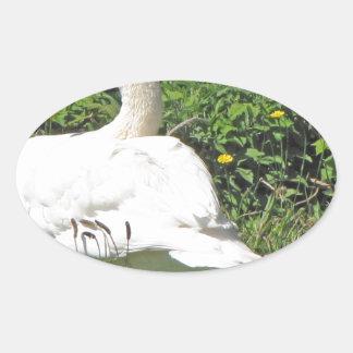 白鳥のand_cygnets 楕円形シール