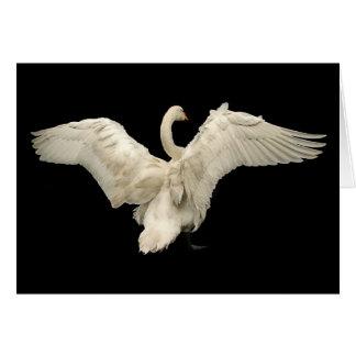 白鳥 カード