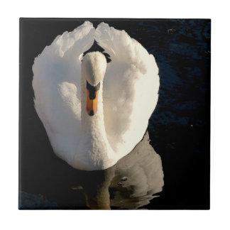白鳥 タイル