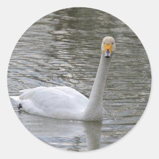白鳥 ラウンドシール
