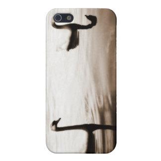 白鳥 iPhone 5 ケース