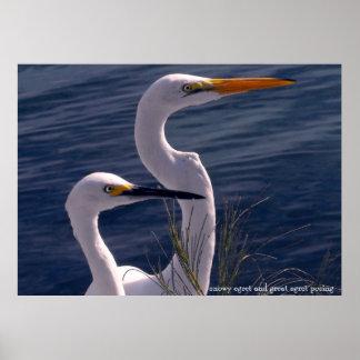 白鷺の提起 ポスター