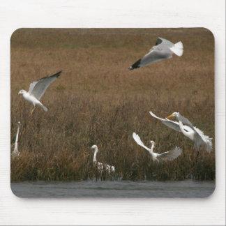 白鷺の鳥の野性生物の動物の沼地のマウスパッド マウスパッド