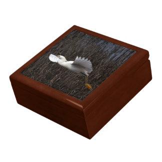 白鷺の鳥の野性生物動物の写真撮影 ギフトボックス