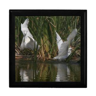 白鷺の鷲の鳥の野性生物の動物のギフト用の箱 ギフトボックス