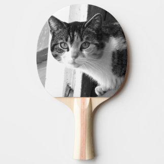 白黒の猫 卓球ラケット