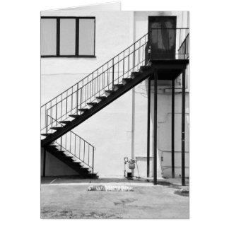 白黒の階段 カード