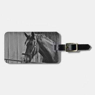 白黒の馬-動物の写真撮影の芸術 ラゲッジタグ