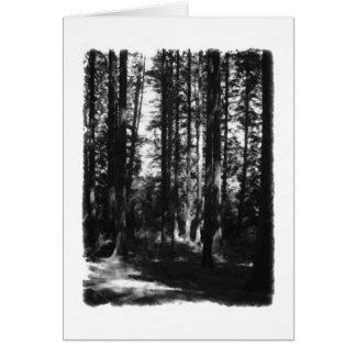 白黒の高い木。 カード