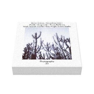 白黒の3Dサボテン キャンバスプリント