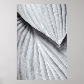 白黒のHostA ポスター