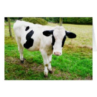 白黒アポストロフィーS牛 カード