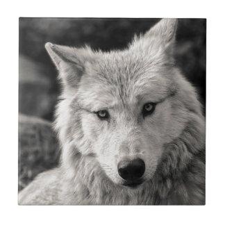 白黒オオカミ タイル