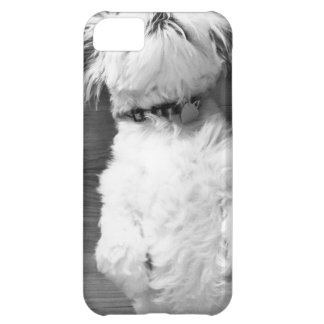 白黒シーズー(犬)Tzuの子犬 iPhone5Cケース