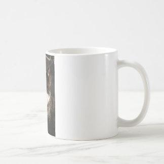 白黒タキシードの子猫 コーヒーマグカップ