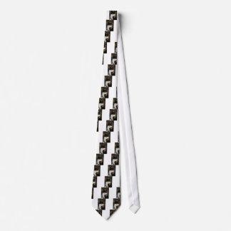 白黒タキシードの子猫 ネクタイ