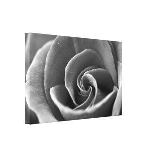 白黒バラの詳細 キャンバスプリント