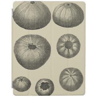 白黒ヒトデ iPadスマートカバー