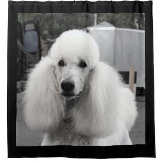 白黒プードル犬のシャワー・カーテン シャワーカーテン
