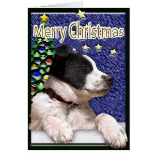 白黒ボーダーコリーの子犬 カード