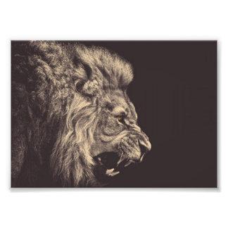 白黒ライオンの鉛筆の芸術のライオンのとどろき フォトプリント
