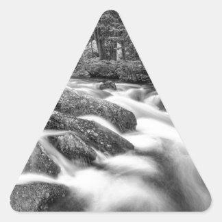 白黒ルーズベルトの国有林の流れ 三角形シール