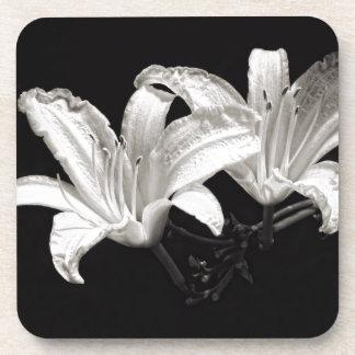 白黒ワスレグサ コースター