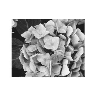 白黒壁の芸術のアジサイのイメージ2 キャンバスプリント