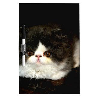 白黒子ネコ ホワイトボード