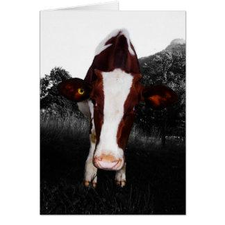 白黒牛-常に カード