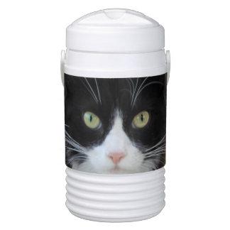 白黒猫のイグルーの飲料のクーラー ドリンククーラー