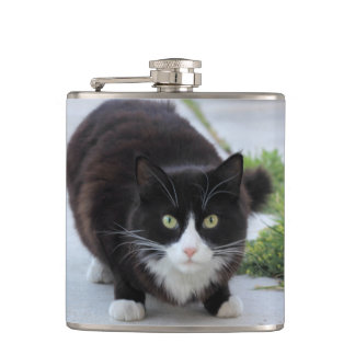 白黒猫 フラスク