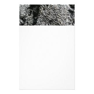 白黒珊瑚私は自然の写真を抽出します 便箋