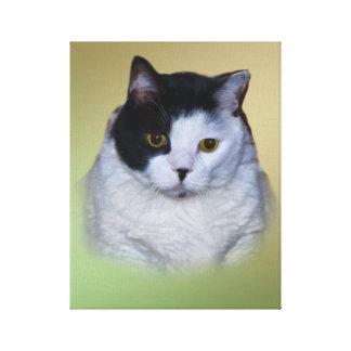 白黒脂肪質猫 キャンバスプリント