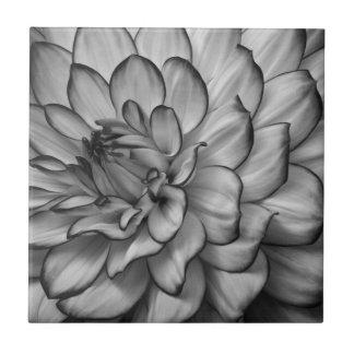 白黒花柄 タイル