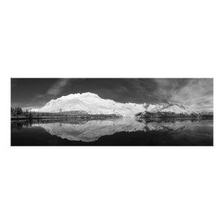 Serpentine Cove Black and White