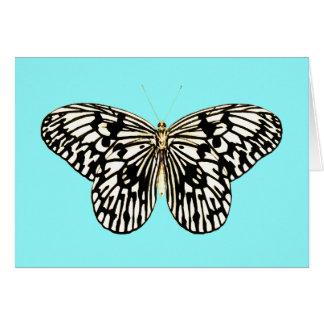 白黒蝶、ターコイズの背景 カード